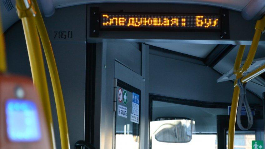 Ночные автобусы вПетербурге завершат сезон 15ноября